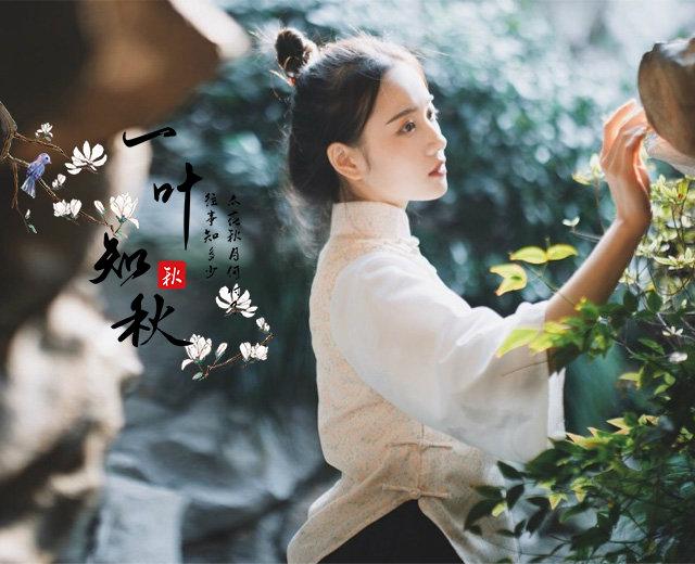 淘宝天猫标准版宽度(640)海报图片-6383